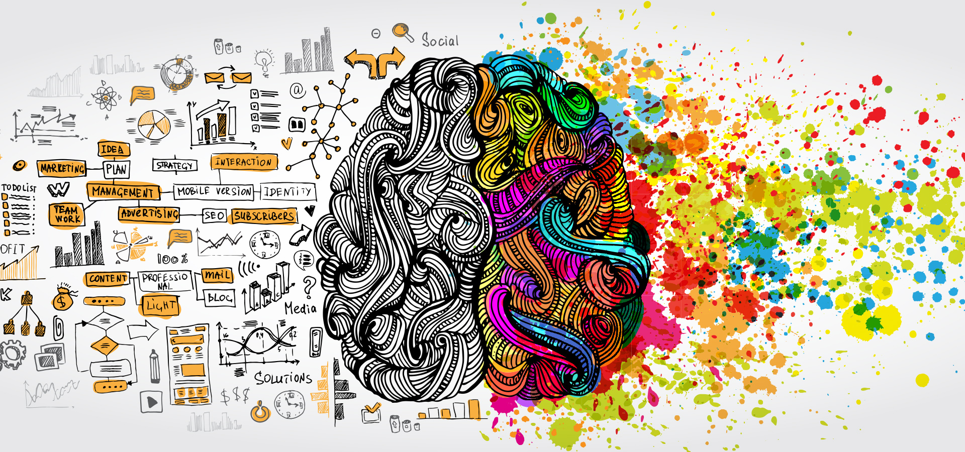 Imagination and Innovation